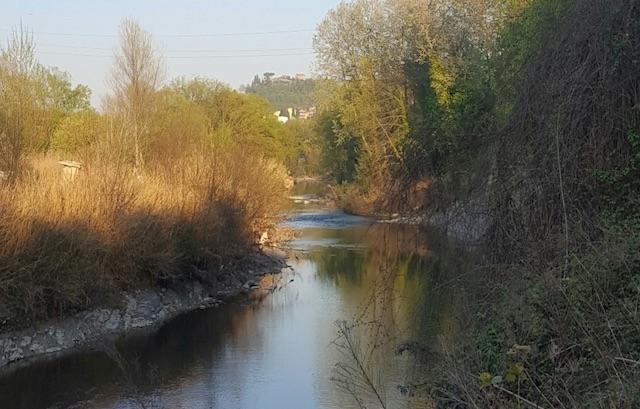 Una storia lunga un fiume: alla scoperta dei tesori di Montelabbate